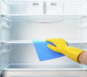 Fridge Cleaning Guide